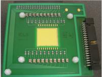 Instrumentation, Détecteur solide : diamant à piste pour le projet EURISOL/SPIRAL2 (LPC Caen)